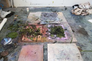 2014, work in process, Rijksakademie, Amsterdam